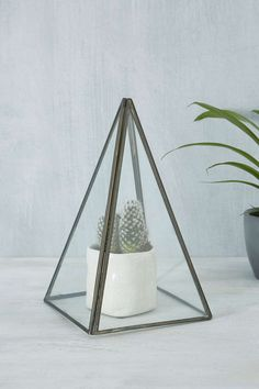 Shop Pyramid Terrarium at Urban Outfitters today. We carry all the latest styles, colours and brands for you to choose from right here. Small Plants, Indoor Plants, Paint Brands, Decorative Cushions, Green Stone, Dream Decor, Botany, Home Gifts, Cleaning Wipes