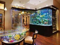 um yeah... now that is a aquarium!