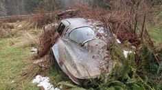1963 Corvette Sting Ray Sport Coupe rots in a field.