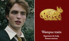 We Sorted 'Harry Potter' Characters Into The New American Hogwarts Houses