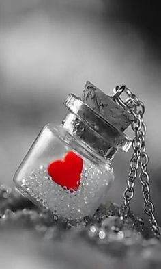 Red Heart Splash in a Bottle Heart Wallpaper, Love Wallpaper, Status Wallpaper, Valentine Crafts, Be My Valentine, Color Splash, Color Pop, Splash Photography, Heart Photography