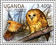 postage stamps   Amazing Postage Stamps of Owl Bird postage stamp of owl uganda country ..