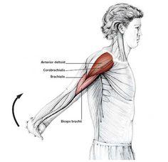 Reverse Shoulder Stretch - Common Neck & Shoulder Stretching Exercises | FrozenShoulder.com