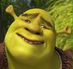 hopeing something that will never come true Funny Profile Pictures, Funny Reaction Pictures, Meme Pictures, Funny Photos, Memes Shrek, Dankest Memes, Best Memes, Shrek Funny, Stupid Funny Memes