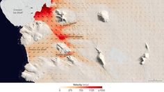New studies show Antarctic glaciers are retreating at record pace.