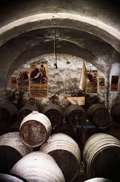 Villa de Rota - Rota Spain Bodega Rota Spain, Time In Spain, Destinations, Spanish Wine, Andalucia, Whisky, Joy, Homes, Memories