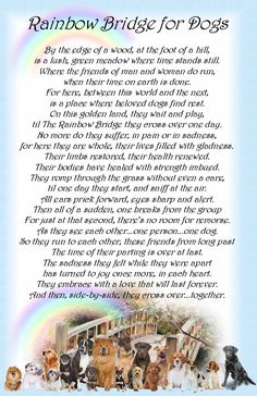 the rainbow bridge dog poem - Bing images Pet Loss Quotes, Dog Quotes, Dog Sayings, Animal Sayings, Rainbow Bridge Dog, Pet Poems, Animal Poems, Miss My Dog, Pet Loss Grief