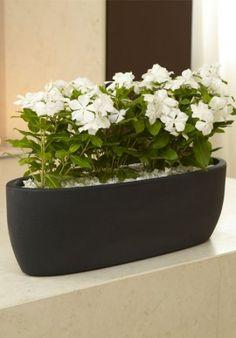 """Flowerpot - """"Iris"""" BUY IT NOW ON www.dezzy.it!"""