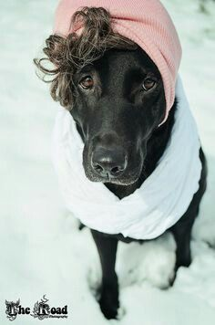 Madge wore a stylish head wrap when she went to the park.
