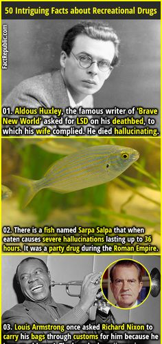 1. Aldous Huxley, the famous writer of 'Brave New World' asked for LSD on his deathbed, to which his wife complied. He died hallucinating. 2. There is a fish named Sarpa Salpa that when eaten causes severe hallucinations lasting up to 36 hours. It was a party drug during the Roman Empire.