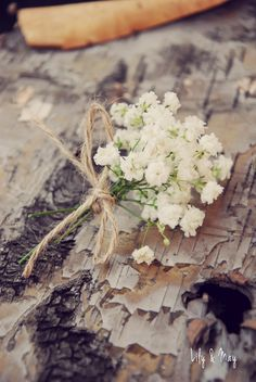 Gyp (baby's breath) buttonhole by Lily & May.