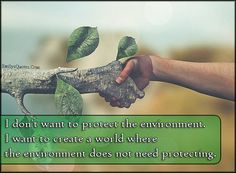 Essay on nature conservation 1 (200 words)
