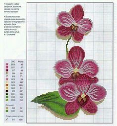 Cross-Stitch Pink Phalenopsis