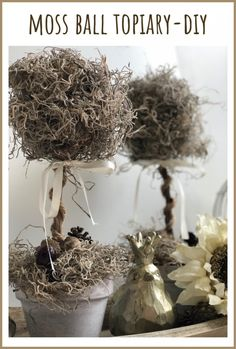 Love the look of topiary ball trees, but don't want to pay the high price tag? Here's a way to make DIY topiary trees from Dollar Tree supplies! Let's make a moss ball topiary diy, which is also perfect for year round decor. Diy Home Decor On A Budget, Decorating On A Budget, Christmas Diy, Christmas Decorations, Holiday Decor, Christmas 2019, Joanna Gaines, Styrofoam Ball Crafts, Rustic Fall Decor