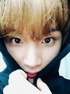 『nct』we are sweet like dalgona - 14 Nct 127, Winwin, Taeyong, Jaehyun, K Pop, Dream Chaser, Wattpad, Boyfriend Material, Nct Dream