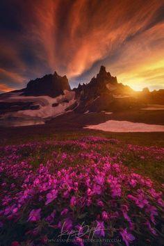 High Light. Nature p beautiful amazing