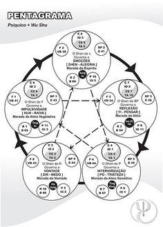 Espaço d'Luz e Paz: Os 5 elementos da Medicina Tradicional Chinesa e a...