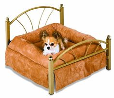 All kinds of dog beds. Dog beds that look like furniture.