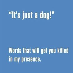 - Funny Dog Quotes - Verbally macerated anyway. Funny Dog Quotes Verbally macerated anyway. appeared first on Gag Dad. appeared first on Gag Dad. I Love Dogs, Puppy Love, Cute Dogs, Animal Quotes, Dog Quotes, Life Quotes, Dog Words, Cesar Millan, My Animal