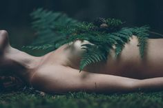 #fern #witchsister #witch #vanity #nature #moss #forest #silence #circle #life #death