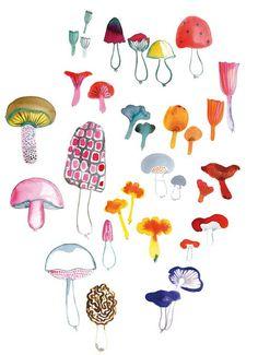 decor8 fresh, mushroom drawing, watercolor mushroom, art prints, chalkboard art, illustration mushroom