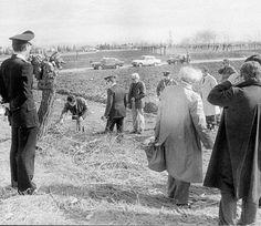 Resta senza nome l'assassino di almeno 4 delle 15 donne uccise in Friuli dal 1971 al 1989. L'omicidio di Marina Lepre riaprì il caso. Ma l'unico indagato, un medico, intanto è morto