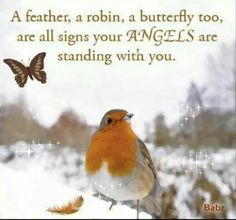 I do like to believe this about the feathers as I've had feathers turn up in strange places! xoxo