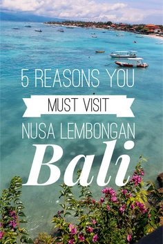 5 Reasons You Must Visit Nusa Lembongan Bali Coffee And Books, Volcano, Evergreen, Mists, Singapore, Islands, Travel Inspiration, Travel Tips, Paradise