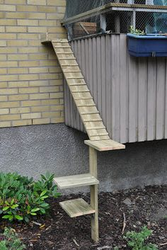 cat ladder by D Thuvesen, Kungsbacka, Sweden
