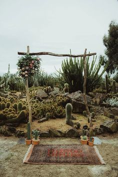 Your dreaming desert wedding is not complete without a stunning cacti altar.