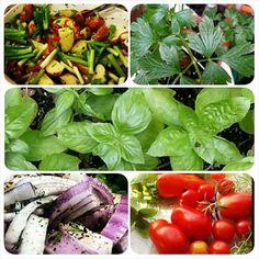 Family Qoutes, Farms, Florida, Vegetables, Instagram, Homesteads, The Florida, Vegetable Recipes, Veggies