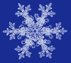 Winter Nails Designs - My Cool Nail Designs What Is A Snowflake, Snowflake Shape, Crystal Snowflakes, Christmas Snowflakes, Real Snowflakes, Snowflake Photography, Snowflake Pictures, Art Et Nature, Frozen Wallpaper