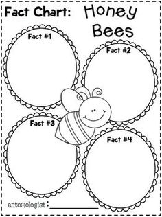 """FREEBIE in the PREVIEW!  Insects Writing """"Research"""" Unit ~Informational Text (Non-Fiction) Unit!  COMPLETELY UPDATED!  Fireflies, Crickets, Honey Bees, Ladybugs, Butterflies, and Click Beetles.  :o)"""