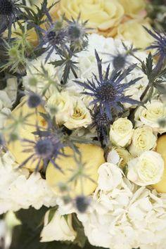 scottish thistle.... beautiful in this arrangement!