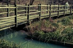 bridges wooden over river in nature old summer (to get full size image visit the site)