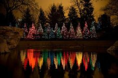 beautiful-christmas-lake-mirror.  We could use this idea in a smaller scale lining our Creek.. By golly, methinks we will do dis!