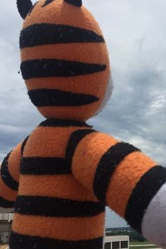 Tampa Airport Staff Gives Boy's Lost Tiger Toy The Best Vacation Ever