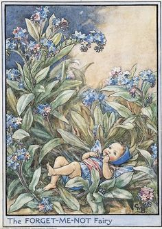 The Forget-me-not Fairy Cicely Mary Barker Flower Fairies Vintage Print 1995 Wall Art Nursery Decor Fairy Print Home Decor Print Fine Art Cicely Mary Barker, Flower Fairies, Fairies Garden, Fantasy Kunst, Fantasy Art, Fairy Dust, Fairy Tales, Images Vintage, Vintage Art