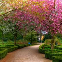 Volkspark; Posted by: Path Finder