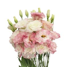 FiftyFlowers.com - White and Pink Lisianthus Flower My new fave!