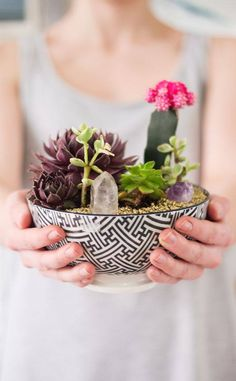 All the You Need to Make Your Own Succulent and Terrarium Masterpiece, succulent bowl with crystal agate and gold rocks, modern decor and garden DIY craft ideas.