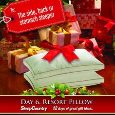 Day 6 - Resort Pillow