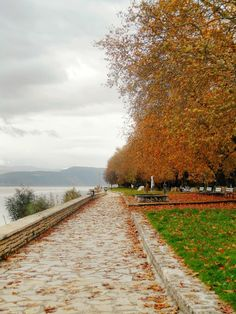 Miles To Go, 10 Picture, Autumn Trees, Macedonia, Greece Travel, Railroad Tracks, Paradise, Landscapes, Greek