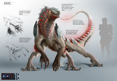 Creature Concept Sheet by Eric Franer. Rynyx Creature Concept Sheet by Eric Franer. Concept Art Alien, Monster Concept Art, Creature Concept Art, Monster Art, Mythical Creatures Art, Alien Creatures, Mythological Creatures, Magical Creatures, Creature Feature