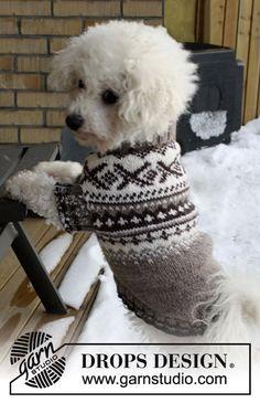 """Strikket DROPS hundegenser i """"Karisma"""" med norsk mønster. Str XS - L Knitted Dog Sweater Pattern, Knit Dog Sweater, Dog Pattern, Sweater Knitting Patterns, Knit Patterns, Free Knitting, Free Pattern, Clothes Patterns, Knitting Ideas"""