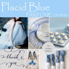 Placid Blue http://www.theperfectpalette.com/2013/11/top-10-pantone-colors-for-spring-2014.html