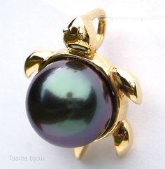 black-pearls-tahiti-tortle.