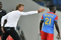 Le Roy Renard loom large over key Africa Cup of Nations clash   Oyem (Gabon) (AFP)  French coaches Herve Renard and Claude le Roy loom large over the key Africa Cup of Nations Group C clash between Morocco and Togo in Oyem Friday.  Renard a Cup of Nations winner with Zambia in 2012 and the Ivory Coast in 2015 was hired by Morocco last year and given a mandate to reach the semi-finals.  Right now a last-four place must seem a long way off for the blond bronzed 48-year-old former Paris rubbish…