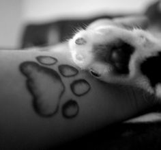 I want a paw print for each of my animals with there names underneath
