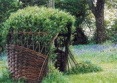Trevor Leat - living willow